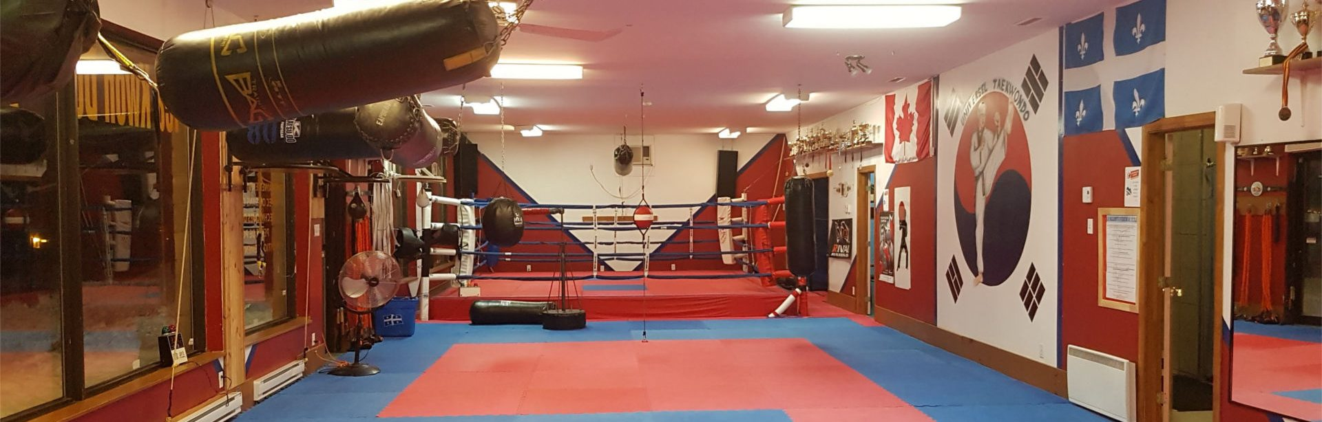 Landscape view of training space.(Dojo)