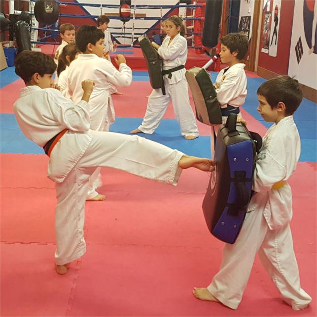 Group of kids practicing Taekwondo kicks in class.