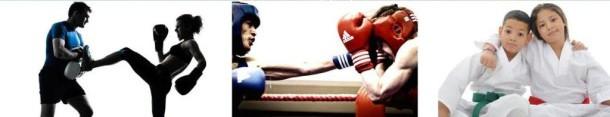 3 images representant le kickboxing, la boxe, le Karaté et le Taekwondo