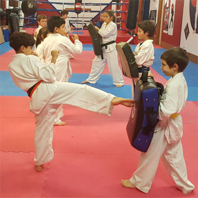 Group of kids practicing Taekwondo kicks in class.